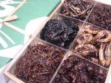 佃茂の佃煮6種詰合5300円